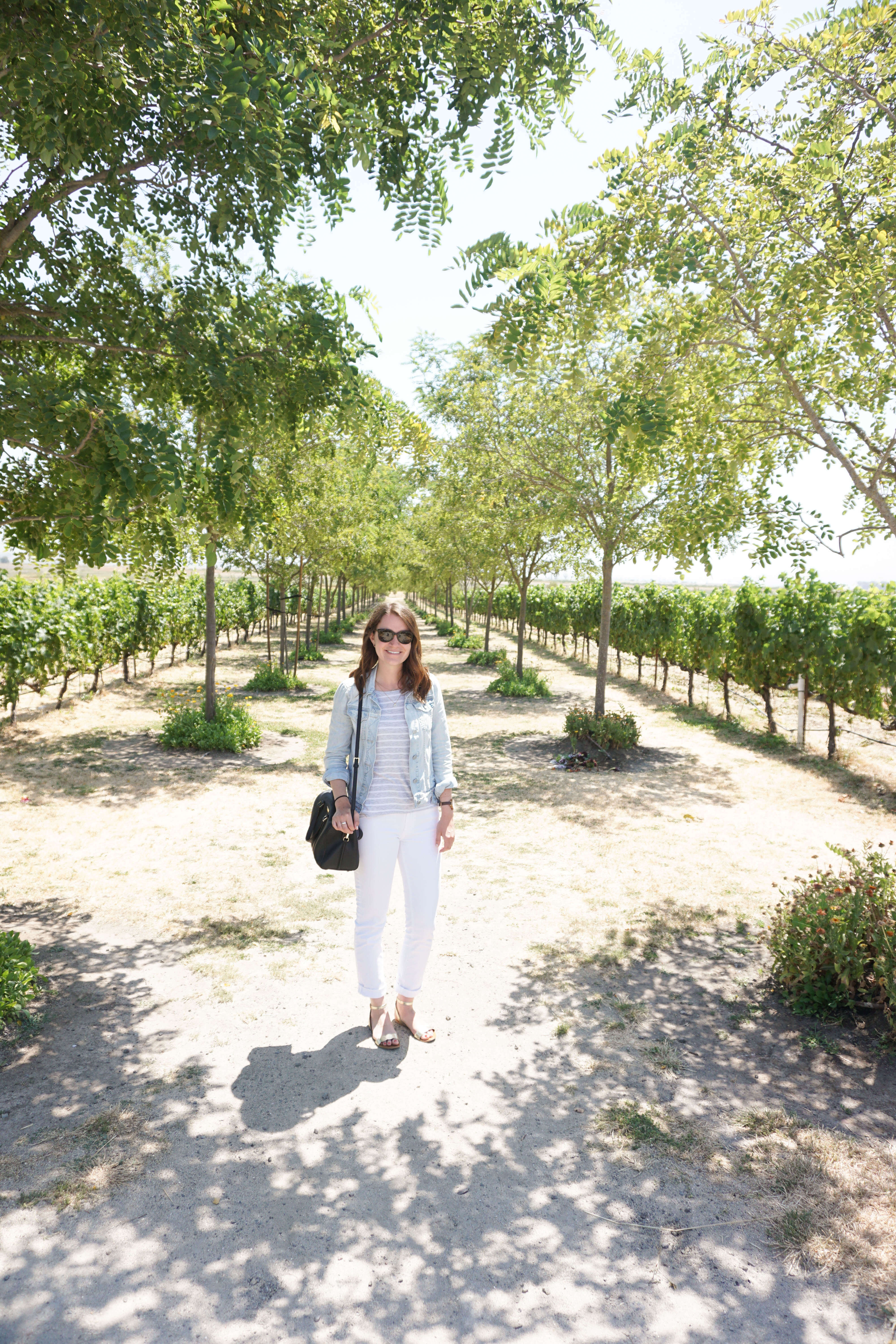 Vacation, here I come! What to eat, drink, and do in Napa Valley.