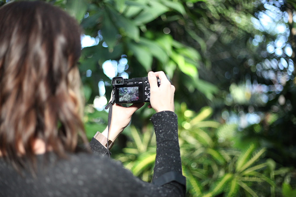 A photographer's honest review of the Sony a6000 mirrorless camera (spoiler alert: she loves it!)